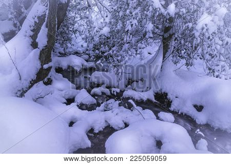 landscape Winter Christmas rural Scene, with snow covered woodland and running water Brook