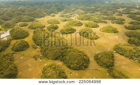 Amazingly shaped Chocolate hills on sunny day on Bohol island, Philippines. Aerial view Chocolate Hills in Bohol, Philippines are earth mounds scattered all over the town of Carmen. Travel concept.