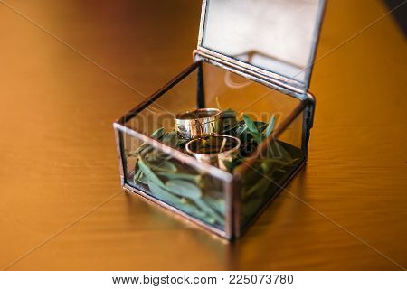 Wedding rings in a glass box on a moss. on a wooden surface.