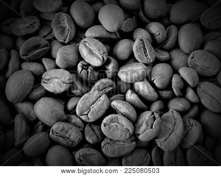 Harvest coffee beans drink cooking wallpaper background arabica taste fragrant