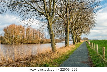 Colorful and picturesque landscape with a seemingly endless walking path along a fence and a row of tall bare trees at the banks of a lake. It is a sunny and cloudy day in the Dutch winter season.