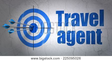 Success travel concept: arrows hitting the center of target, Blue Travel Agent on wall background, 3D rendering