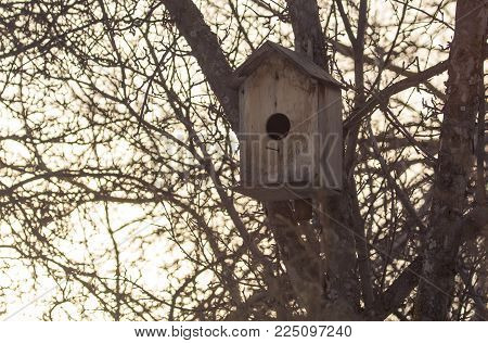 birdhouse on a tree outdoors . In the park in nature