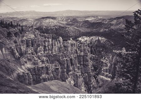 Big Orange Hoodoo in Bryce Canyon National Park