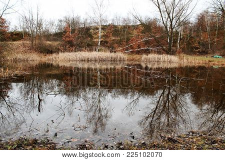 a view of drying pond and trees