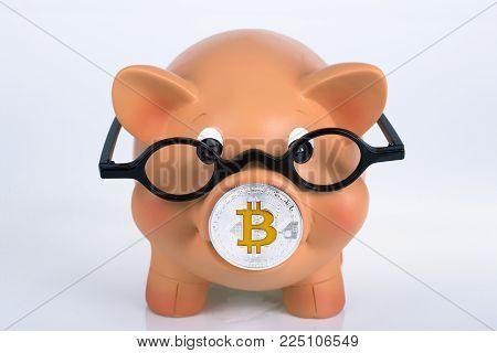 Piggybank with Bitcoin - Crypto Currenc Concept