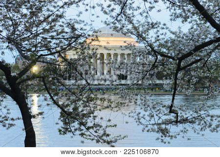 Washington DC during Cherry Blossom Festival - Jefferson Memorial