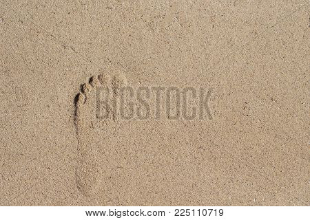 Bare foot print on white sand. Female barefoot print on beach sand. Seashore escape banner template. Sand beach texture. Sunny beach top view. Seaside sand surface. Bare foot mark on white beach