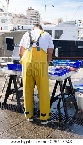 The Back Of A Fisherman In Yellow Waterproof Overalls Arranging Fish On  A Portable Table At A Marke