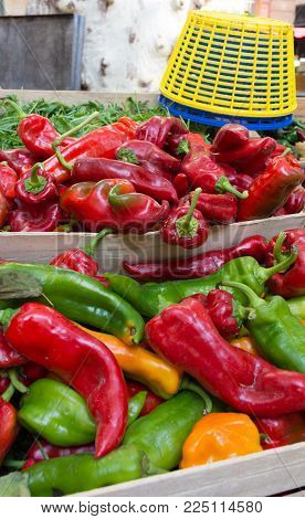 Colorful Anaheim Chile Peppers