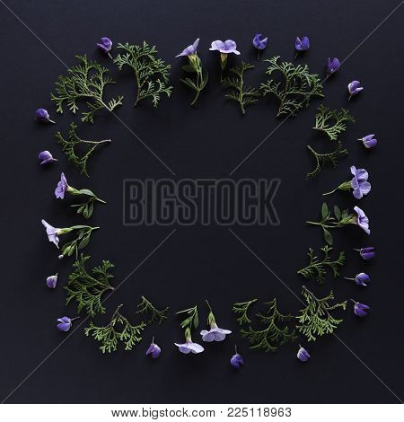 Frame made of leaves and flowers on blackbackground. Top view floral composition. Flat lay arrangement.