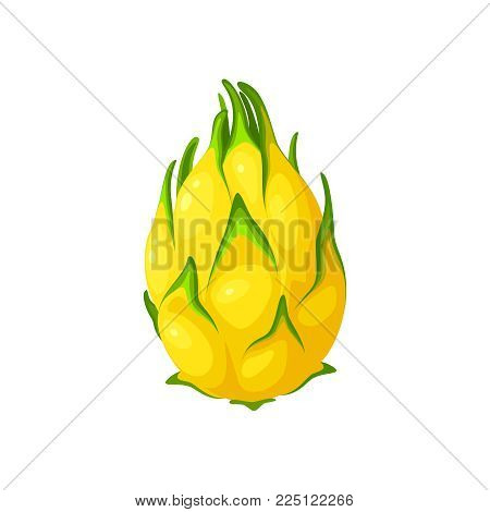 Summer tropical fruits for healthy lifestyle. Yellow dragon fruit, whole fruit. Vector illustration cartoon flat icon isolated on white.