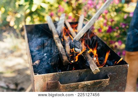 Firewood burns in a barbecue in the background of nature