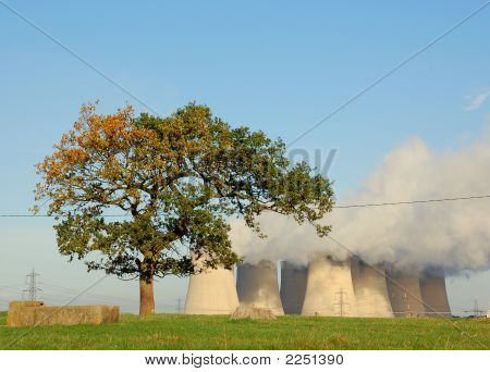 Lonely Tree With Cooling Towers