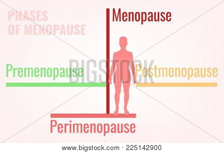 Stages of menopause. Premenopause, perimenopause and postmenopause. Simple medical infographic useful for an educational poster graphic design. Vector illustration. poster