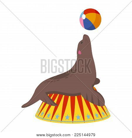 Circus seal icon. Cartoon illustration of circus seal. Vector isolated retro show flat icon for web.