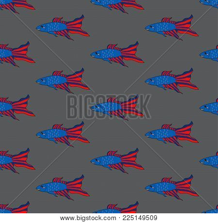 Colorful Siamese Fighting Fish on Gray Brown Background. Vector Illustration.
