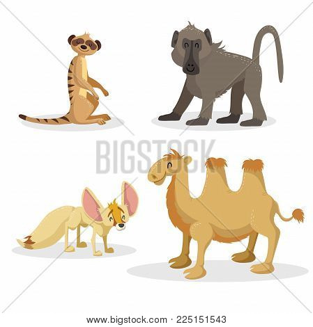 Cartoon trendy style african animals set. Baboon monkey, fennec fox, meerkat and bactrian camel . Closed eyes and cheerful mascots. Vector wildlife and zoo illustrations.