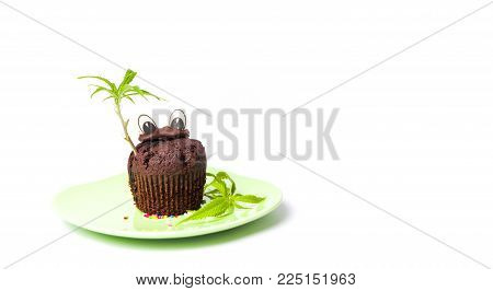 Chocolate muffin with marijuana leaf isolated on white