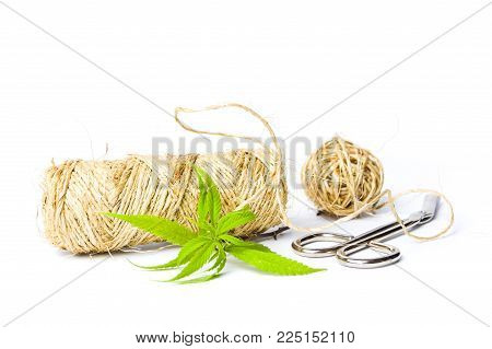 Marijuana Leafs And Cannabis Hemp With Scissors