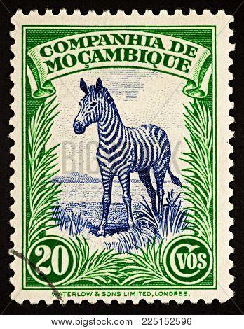 Moscow, Russia - February 05, 2018: A stamp printed in Mozambique shows Plains Zebra (Equus quagga), series