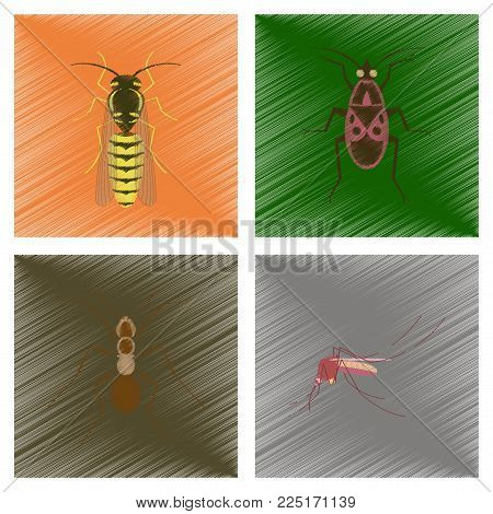 assembly flat shading style illustration of insect honey wasp soldier bug ant mosquito