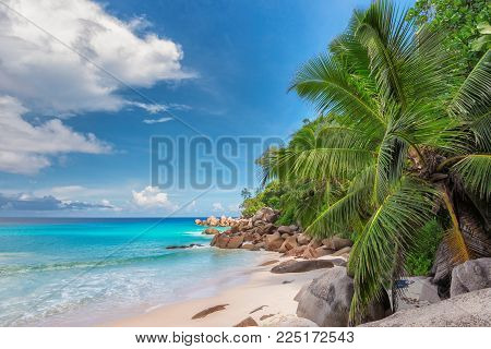 Beautiful beach with palm trees on Paradise island in the turquoise sea.