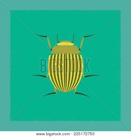 flat shading style illustration of Colorado beetle