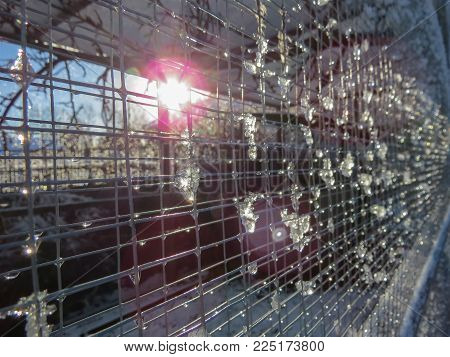 Melting snow on weld mesh of an outdoor aviary with sun flare light effects from the low winter sun.