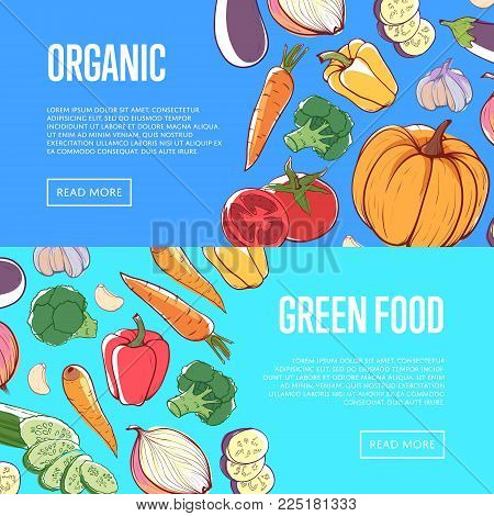 Natural Healthy Food Flyers With Fresh Vegetables. Eco Farming, Supermarket Advertising Of Organic P