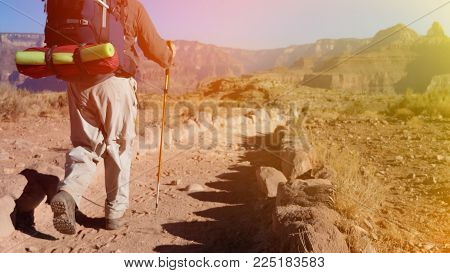Hiker Traveling With Trekking Pole And Backpack At Grand Canyon