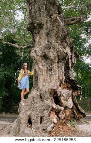 A huge gnarled old rotten tree and the girl is standing climbed on him.