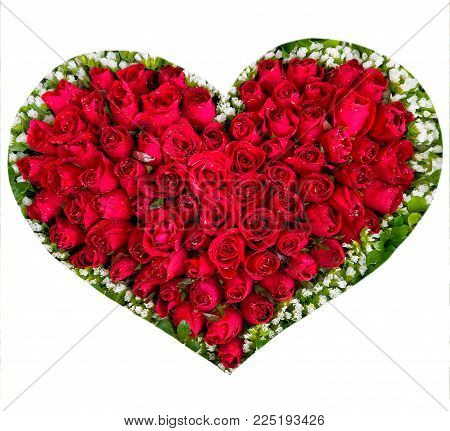 Flower Heart Red Roses Isolated On White Background, Valentines Day.