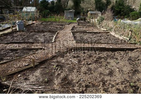 Allotment beds in Winter ready for Spring sowing