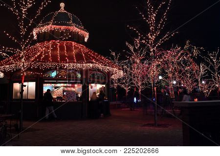 Concession Stand And Trees Illuminated With Christmas Lights At Zoo Lights, Lincoln Park Zoo, Chicag