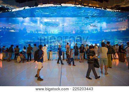 DUBAI, UNITED ARAB EMIRATES - JAN 02, 2018: Tourists are watching at a big aquarium inside the shopping mall in the center of the city near the Burj Khalifa