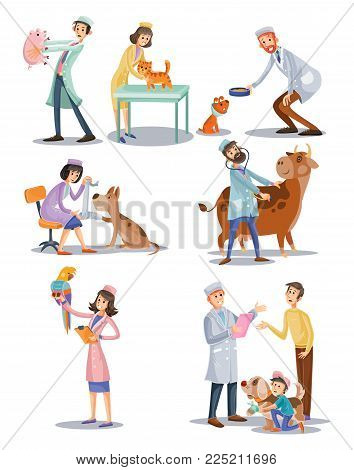 Vector set of professional vet doctors with animals, veterinary, clinic for pets. Cartoon characters, medical care concept. Cat, dog, cow, parrot treatment, examination surgery.