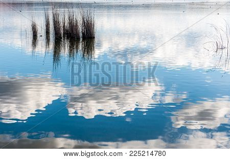 Landscape Of Pond With Dramatic Sky