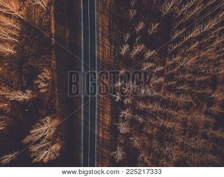 Aerial View Of Brand New Asphalt Road Through Deciduous Autumn Forest Woodland, Concept Of Journey A