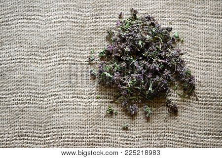 Dry Small Purple Flowers Lay On Brown Sacking