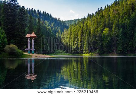 beautiful scenery of Synevyr lake. spruce forest in evening light reflects in the rippled water. low viewpoint