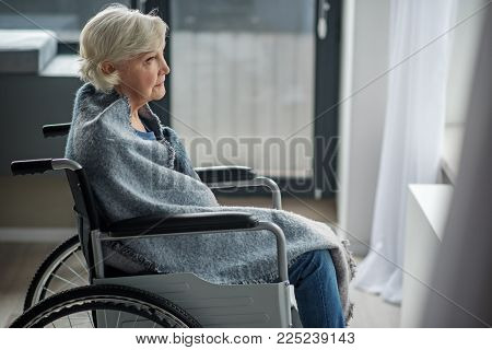 Moody Senior Woman Looking Outside With Yearning Look. She Is Sitting In Wheelchair In Room Wrapped