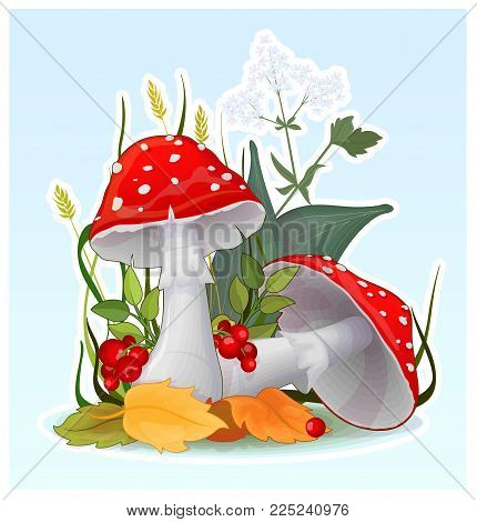 Cartoon fly-agaric muchroom, vector illustration of toadstools