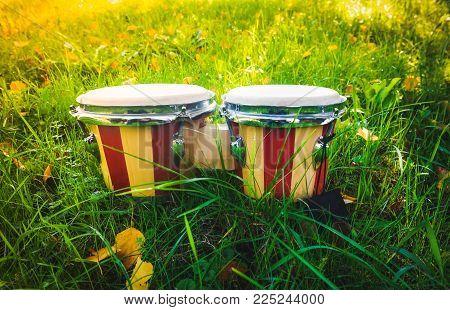 Bongos - drums on grass, music instrument