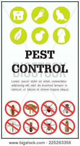 Vector vertical poster with icons destroying harmful insects, inscription Control over pests and place for your text on a white background. Suitable as poster or flyer for ads on insect pests.