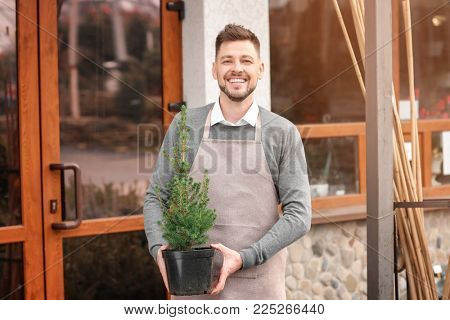 Business owner holding pot with plant near his store, outdoors