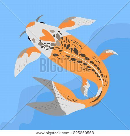 Vector iflat llustration with koi fish. Cute koi in water. Vector illustration of traditional sacred Japanese Koi carp fish.