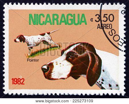 Nicaragua - Circa 1982: A Stamp Printed In Nicaragua Shows Pointer, Dog Breed, Circa 1982