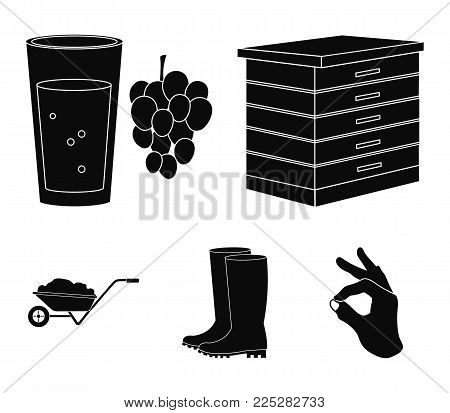 Hive, grapes, boots, wheelbarrow.Farm set collection icons in black style vector symbol stock illustration.