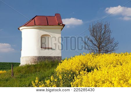white chapel and field of rapeseed, springtime landscape